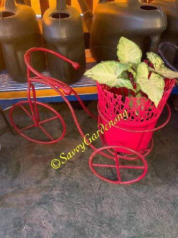 Wrought iron bicycle plant stand