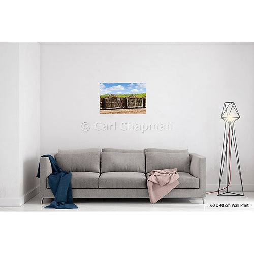 1544 harvested sugar cane train ready for crushing acrylic wall art photo print
