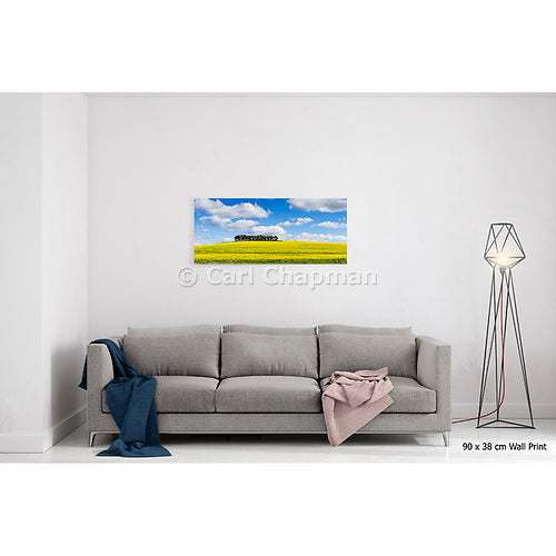 2076 Trees on hill overlooking canola crop acrylic wall art photo print