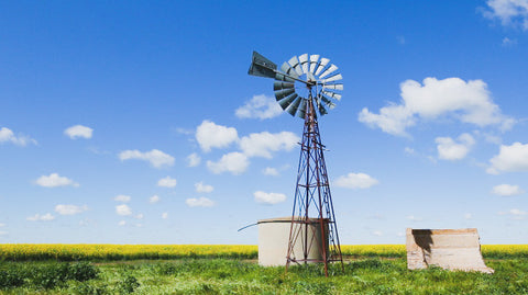 V0118 Windmill and water tank in field of canola - Stock Video
