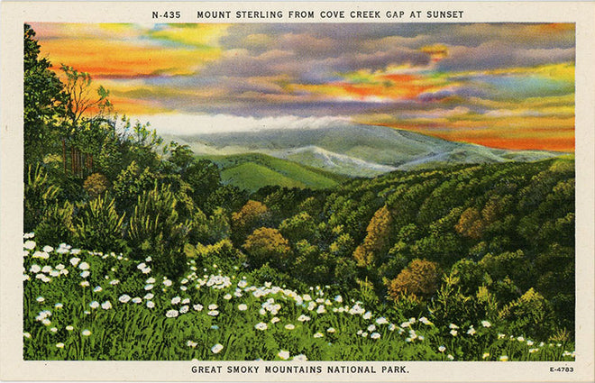 Tennessee Vintage Postcards