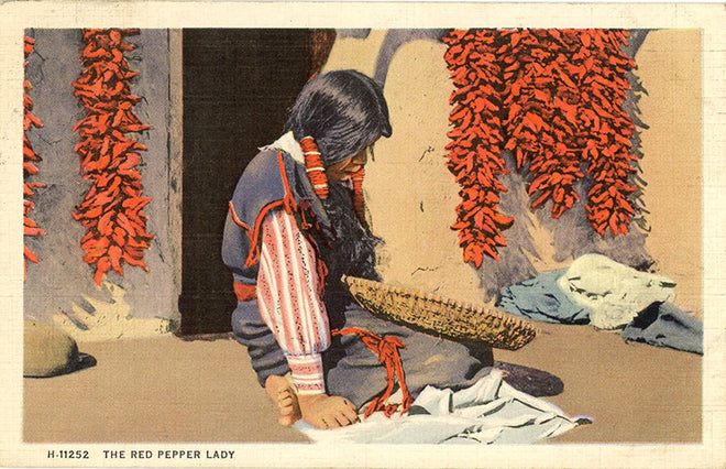 Native Americana Vintage Postcards