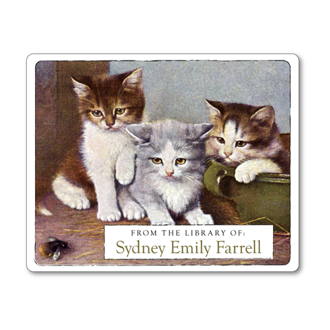Three Little Kittens Personalized Bookplates - Ex Libris Book Labels - Gift for Cat Lover - Vintage Postcard Boutique
