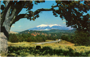 San Francisco Peaks Arizona Interstate Highway 40 Vintage Postcard 1966 - Vintage Postcard Boutique