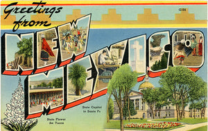 New Mexico Sunshine State Large Letter Vintage Postcard (unused)