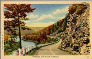 Foley Alabama Winding Road Autumn Foliage Vintage Postcard (unused) - Vintage Postcard Boutique