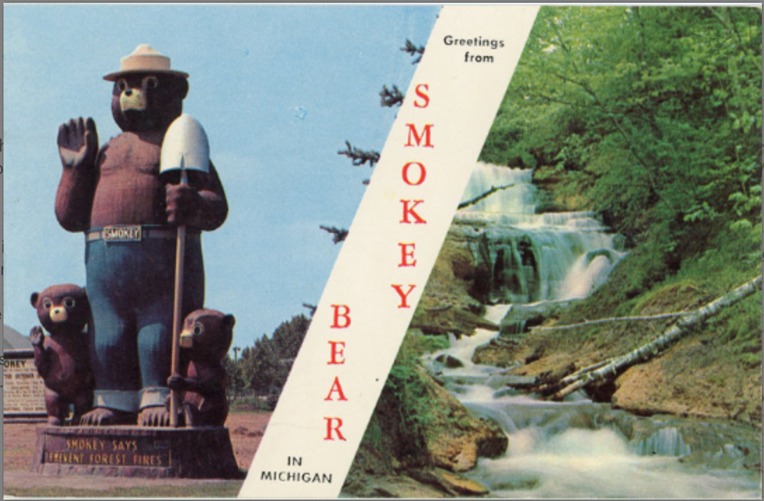 Smokey Bear Fire Prevention Michigan Vintage Postcard (unused) - Vintage Postcard Boutique