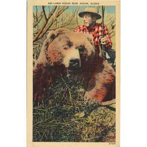Kodiak Island Alaska Kodiak Bear with Hunter Vintage Postcard (unused) - Vintage Postcard Boutique