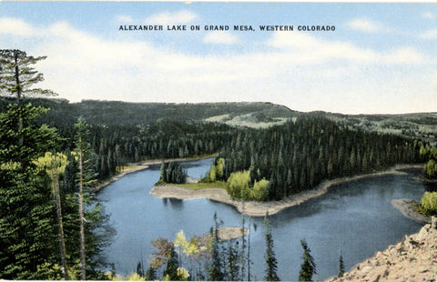 Alexander Lake on Grand Mesa Western Colorado Vintage Postcard (unused) - Vintage Postcard Boutique