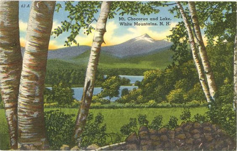 Mt. Chocorua and Lake White Mountains New Hampshire Birch Trees Vintage Postcard (unused) - Vintage Postcard Boutique