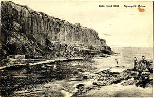 Ogunquit Maine Bald Head Cliff Postcard
