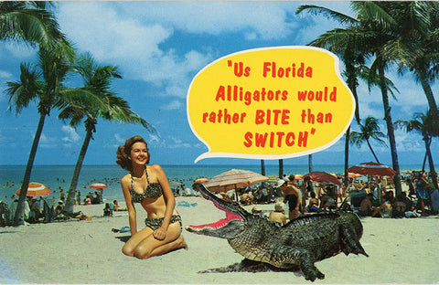 Bathing Beauty Brunette in Bikini on Florida Beach with Alligator Vintage Postcard (unused) - Vintage Postcard Boutique