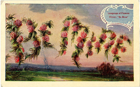 Be Mine Language of Flowers Clover Vintage Botanical Postcard (unused) - Vintage Postcard Boutique