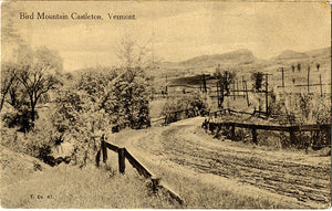 Castleton Vermont Bird Mountain Vintage Postcard - Vintage Postcard Boutique