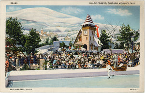 Black Forest Chicago World's Fair Ice Skating Pond Illinois Vintage Postcard (unused)