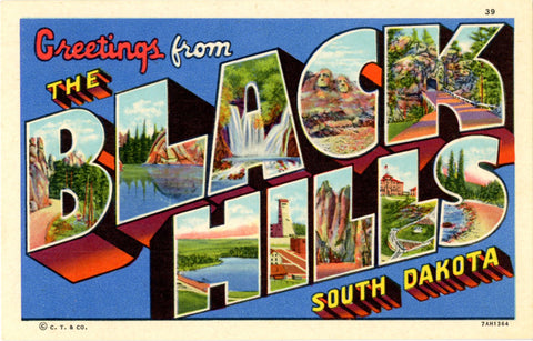 Black Hills South Dakota Large Letter Vintage Linen Greetings Postcard (unused) - Vintage Postcard Boutique