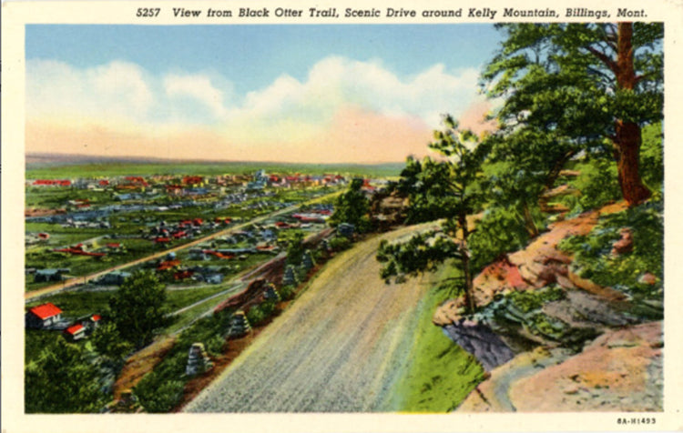 Billings Montana Kelly Mountain from Black Otter Trail Vintage Postcard (unused) - Vintage Postcard Boutique