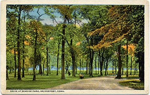 Bridgeport Connecticut Seaside Park Drive Vintage Postcard - Vintage Postcard Boutique