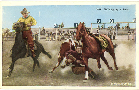 Vintage Western Postcard – Cowboys Bulldogging A Steer (unused) circa 1920 - Vintage Postcard Boutique