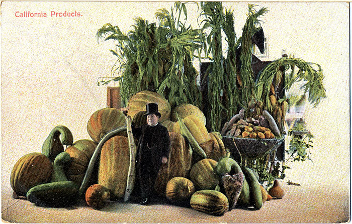 California Fruits & Vegetables Products EXAGGERATION Vintage Postcard circa 1910 (unused) - Vintage Postcard Boutique