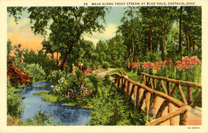 Castalia Ohio Walk Along Trout Stream at Blue Hole Vintage Postcard (unused) - Vintage Postcard Boutique