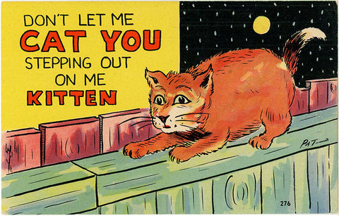 Cat You Stepping Out Vintage Comic Postcard (unused) - Vintage Postcard Boutique