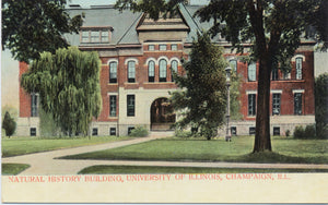 University of Illinois Champaign Natural History Building Vintage Postcard circa 1910 (unused) - Vintage Postcard Boutique