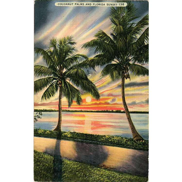 Cocoanut Palms & Florida Sunset Vintage Postcard 1940 - Vintage Postcard Boutique