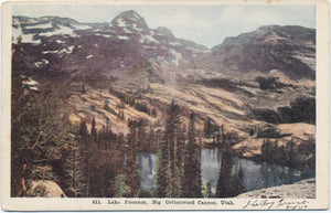 Big Cottonwood Canyon Utah Lake Florence Vintage Postcard 1909 - Vintage Postcard Boutique
