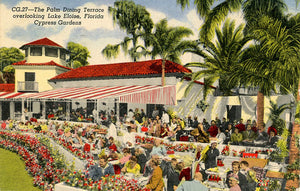 Cypress Gardens Florida Palm Dining Terrace Overlooking Lake Eloise Vintage Postcard 1956