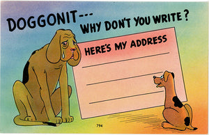 Dogs Why Don't You Write Vintage Comic Postcard (unused) - Vintage Postcard Boutique