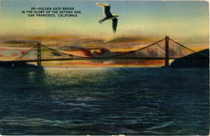San Francisco Bay Bridge Golden Gate Bridge at Sunset with Seagull California Vintage Postcard - Vintage Postcard Boutique