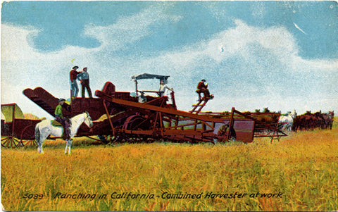 California Ranching Combined Harvester Vintage Postcard circa 1910 (unused) - Vintage Postcard Boutique