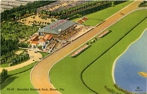Hialeah Park Miami Florida Horse Racing Vintage Postcard (unused) - Vintage Postcard Boutique