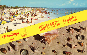 Indialantic Florida Beach & Sea Shells Vintage Postcard 1965 (unused) - Vintage Postcard Boutique