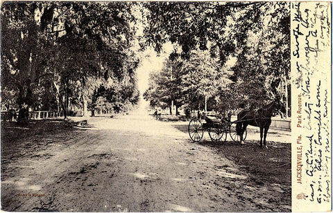 Jacksonville Florida Horse & Buggy on Park Avenue Real Photo Vintage Postcard 1907 - Vintage Postcard Boutique