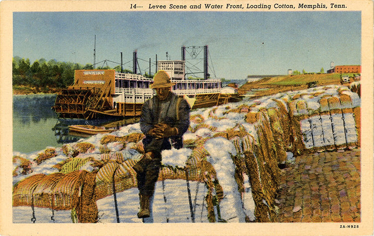 Memphis Tennessee Levee and Water Front Loading Cotton Vintage Postcard (unused) - Vintage Postcard Boutique