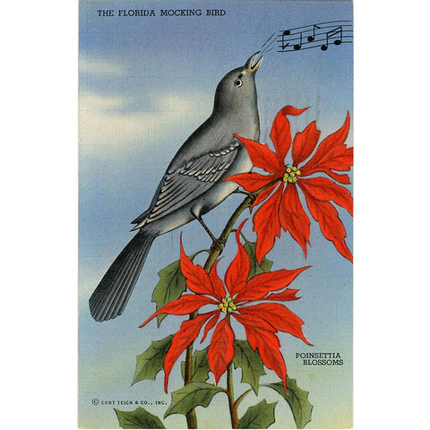 Mocking Bird & Poinsettia Blossoms State of Florida Vintage Postcard 1945 - Vintage Postcard Boutique