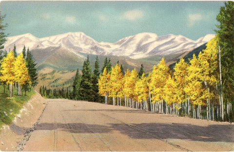 Mummy Range from Trail Ridge Road Hidden Valley Rocky Mountain National Park Colorado Vintage Postcard (unused)