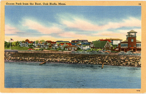 Oak Bluffs Massachusetts Ocean Park from Boat Vintage Postcard 1959 - Vintage Postcard Boutique