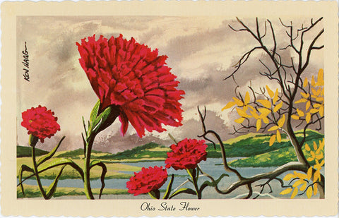 Ohio State Flower - Scarlet Carnation Vintage Botanical Postcard Signed Artist Ken Haag (unused)