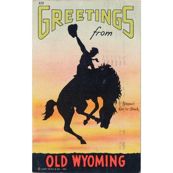 Old Wyoming Rodeo Cowboy Vintage Postcard 1946 - Vintage Postcard Boutique