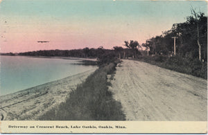 Osakis Minnesota Crescent Beach on Lake Osakis Vintage Postcard 1919 - Vintage Postcard Boutique