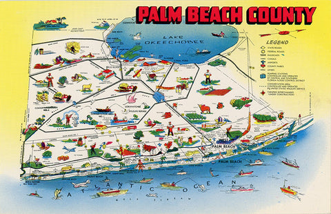Palm Beach County Florida State Map Sunshine State Vintage Postcard (unused)
