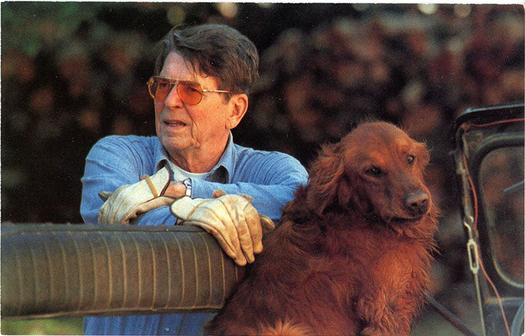 President Ronald Reagan & Golden Retriever Santa Barbara Ranch Vintage Postcard 1984 (unused) - Vintage Postcard Boutique