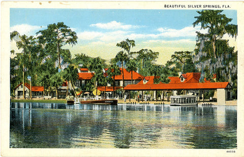 Silver Springs Florida Nature's Underwater Fairyland Vintage Postcard (unused)