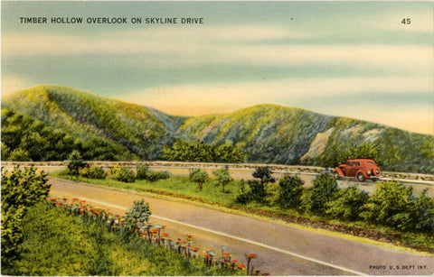 Shenandoah National Park Virginia Timber Hollow Overlook Skyline Drive Vintage Postcard (unused) - Vintage Postcard Boutique