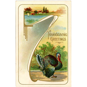 Thanksgiving Turkey Embossed Vintage Greetings Postcard - circa 1910 - Vintage Postcard Boutique