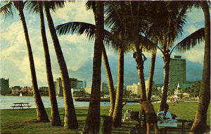 Waikiki Hotels Through Palm Trees Vintage Hawaii Postcard 1969