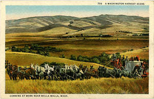 Walla Walla Washington Combine Harvest Work with Horses Vintage Postcard 1937 - Vintage Postcard Boutique